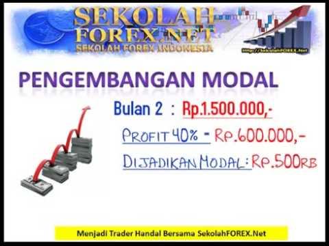 Belajar trading forex pemula