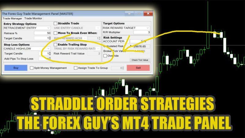 Euro global trading ltd