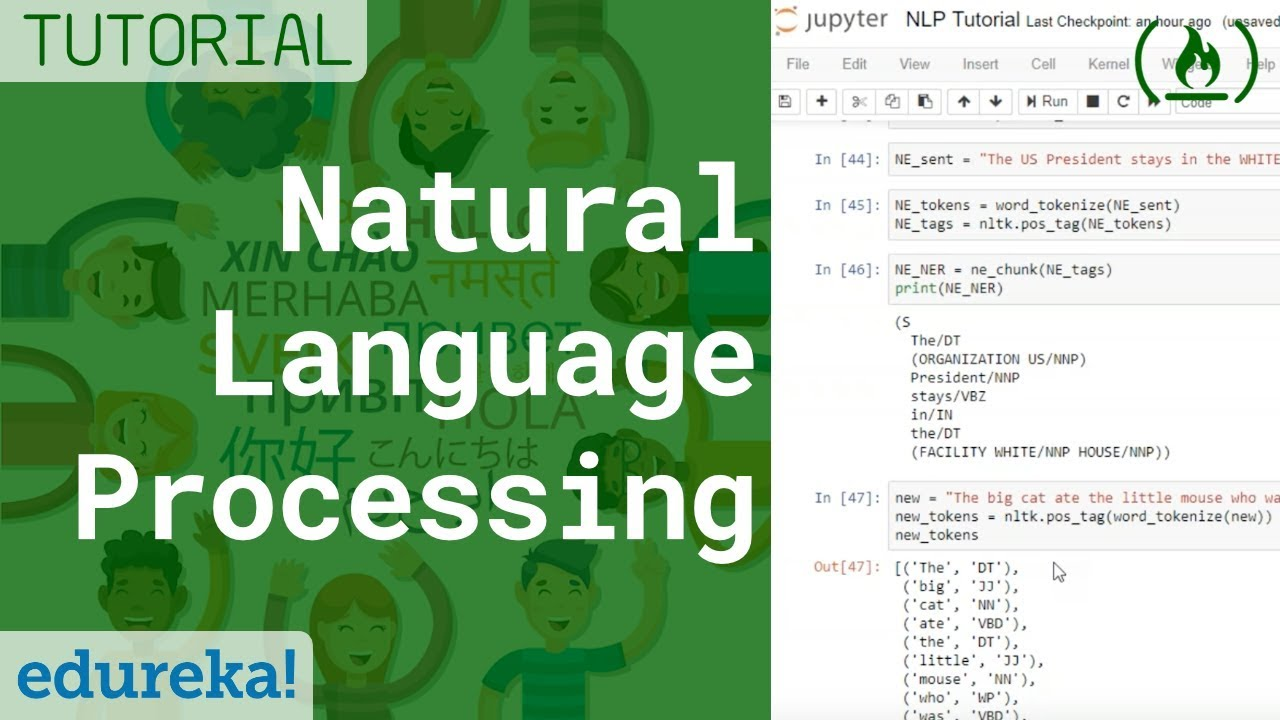 Natural Language Processing (NLP) Tutorial with Python & NLTK