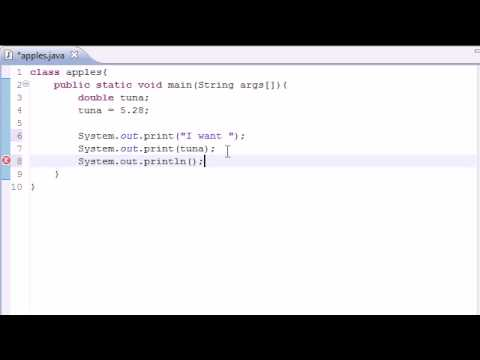 Java Programming Tutorial – 5 – Variables