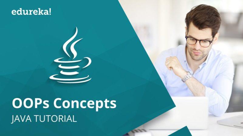 Java OOPs Concepts | Object Oriented Programming | Java
